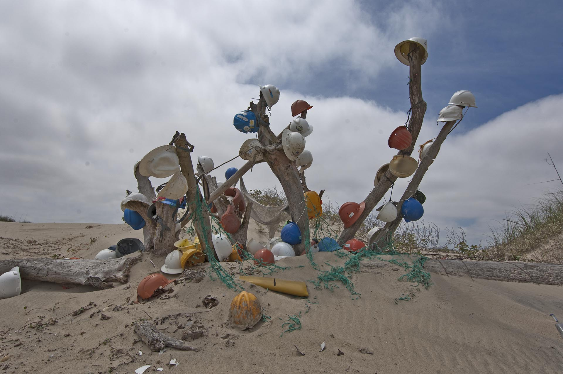SP Beach Sculpture Hardhat tree
